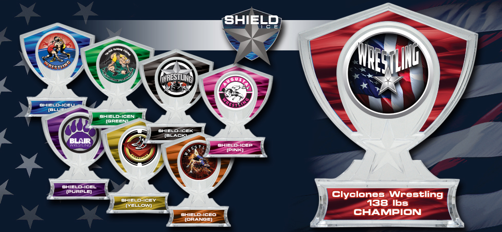 2017 SHIELD ICE AWARDS